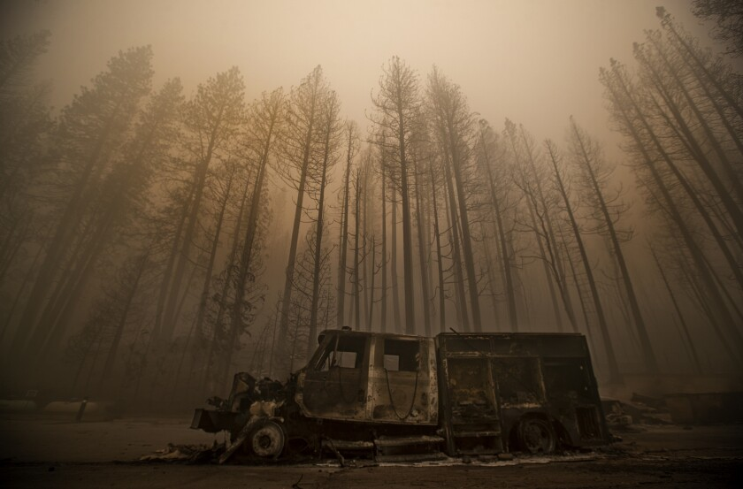 Burned trees and truck.