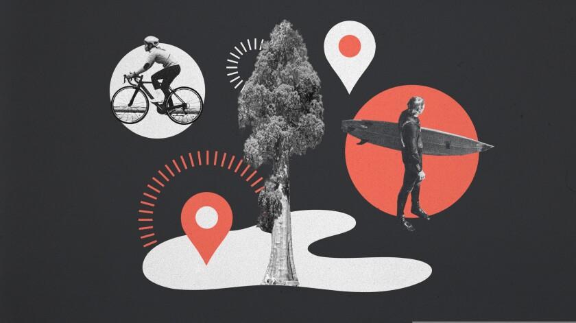 Graphics of Santa Cruz