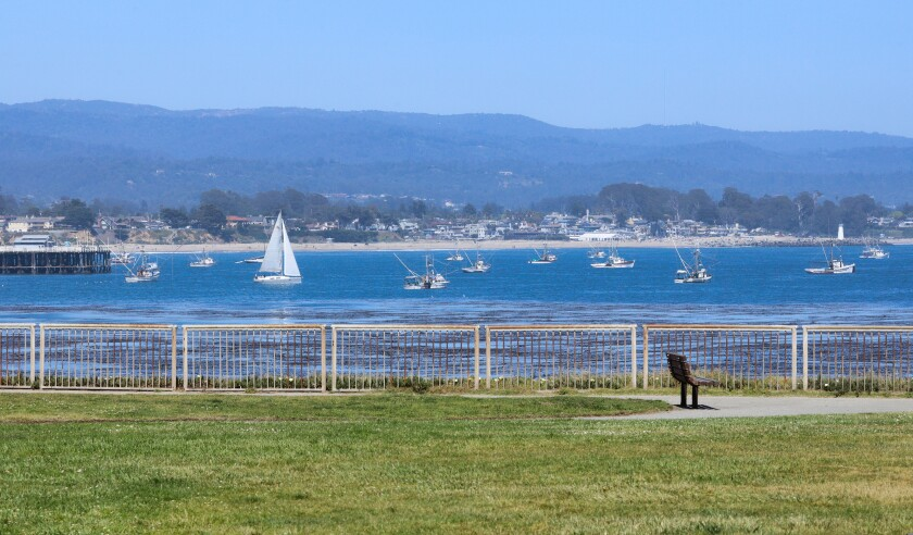 Boats near the Santa Cruz Wharf
