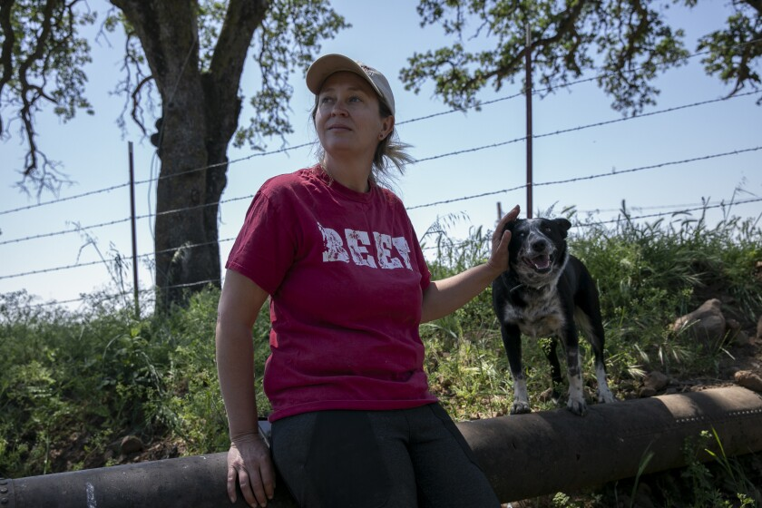 Rancher Megan Brown sits with one of her dogs in the dry creek on her property on April 22, 2021. Photo by Anne Wernikoff, CalMatters