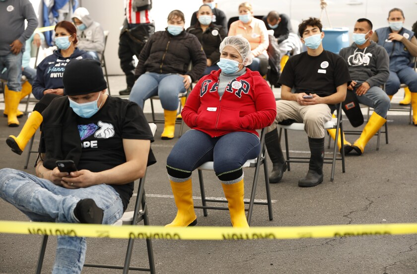 Workers for Rose & Shore, Inc., a food processing plant, wait after getting vaccinated.