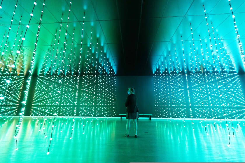Ocean of Light: Submergence exhibition at the MAH, on view through January 2, 2022.