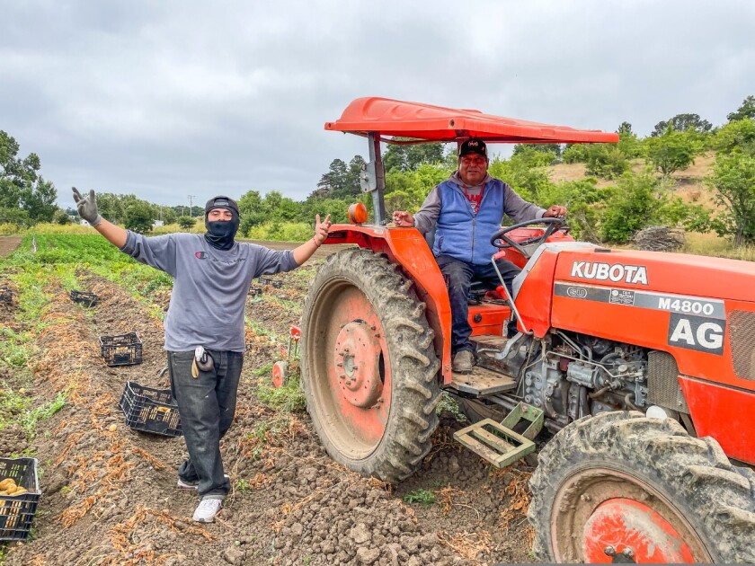 Farmers and their tractor