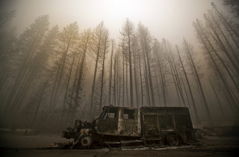 Burned trees rise above a truck destroyed by the Dixie Fire in the town of Greenville.
