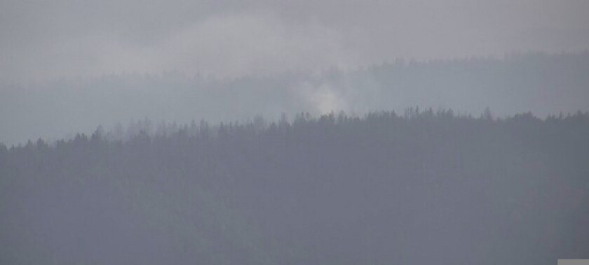 A fire burns in Big Basin Redwoods State Park on May 31, 2021
