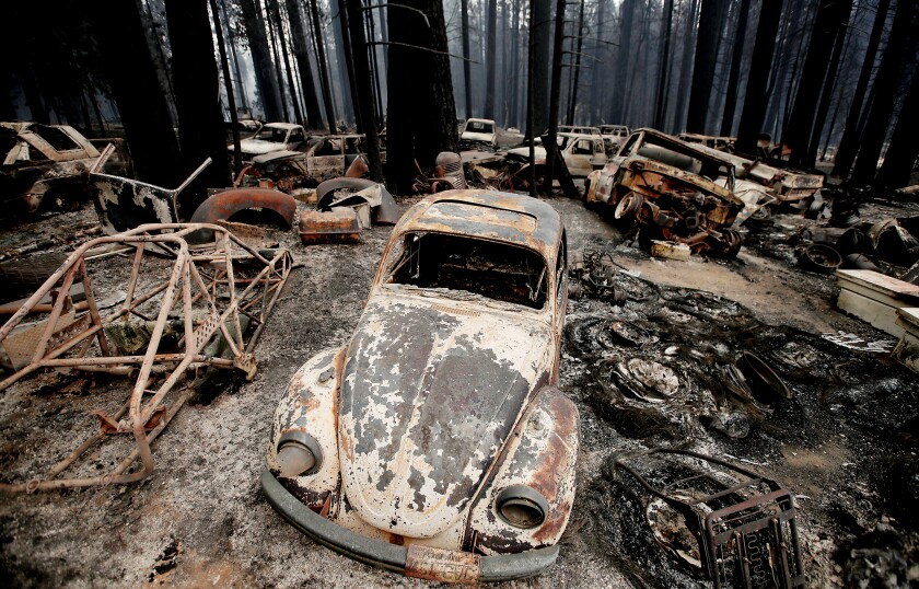 Burned vehicles and trees.