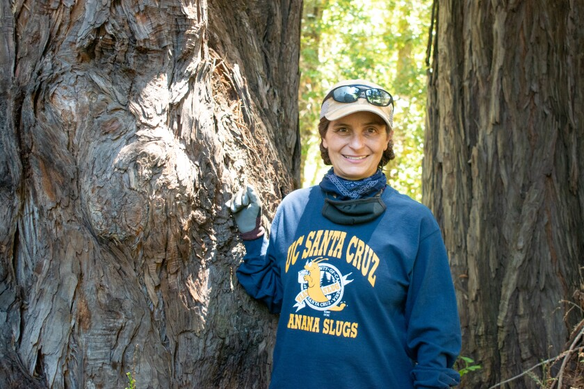 Katharina Pierini is graduating from UCSC this weekend after a journey at the university that began in 1994.