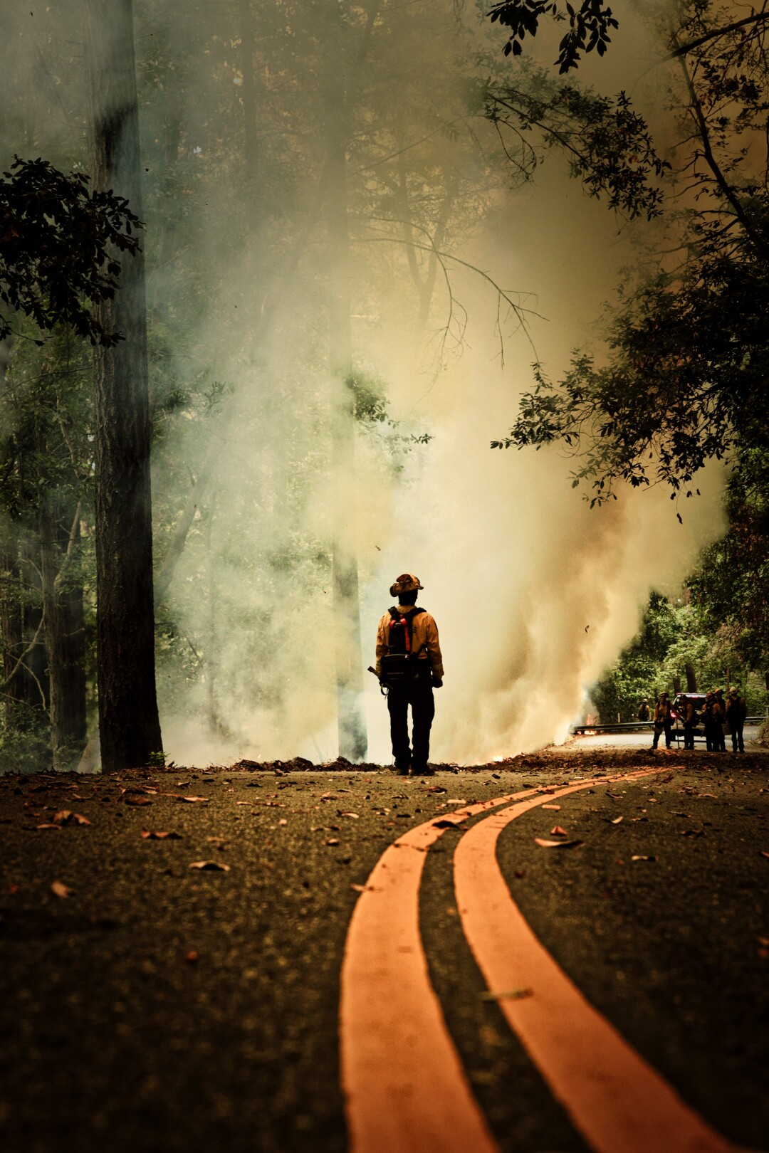 Cal Fire crews monitor controlled backburns to contain the 2020 CZU wildfire.