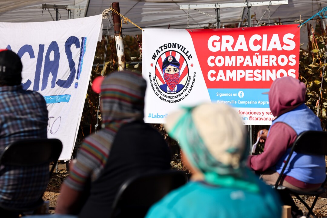 Campesinos listen to Ruby Vasquez's message.