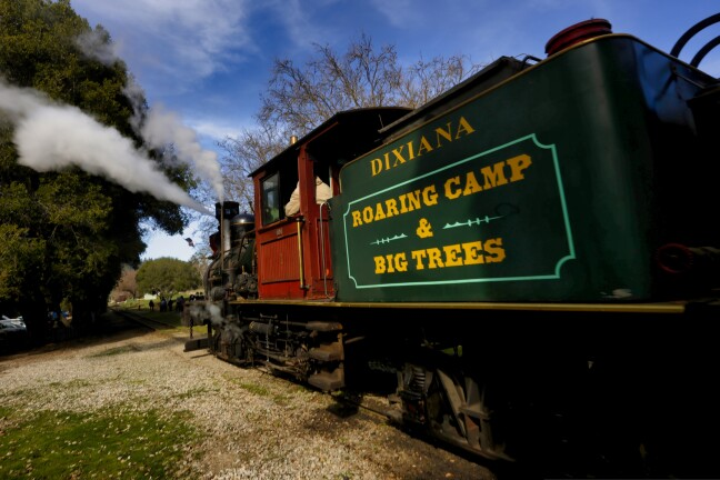 Roaring Camp in Felton will take you into the woods.