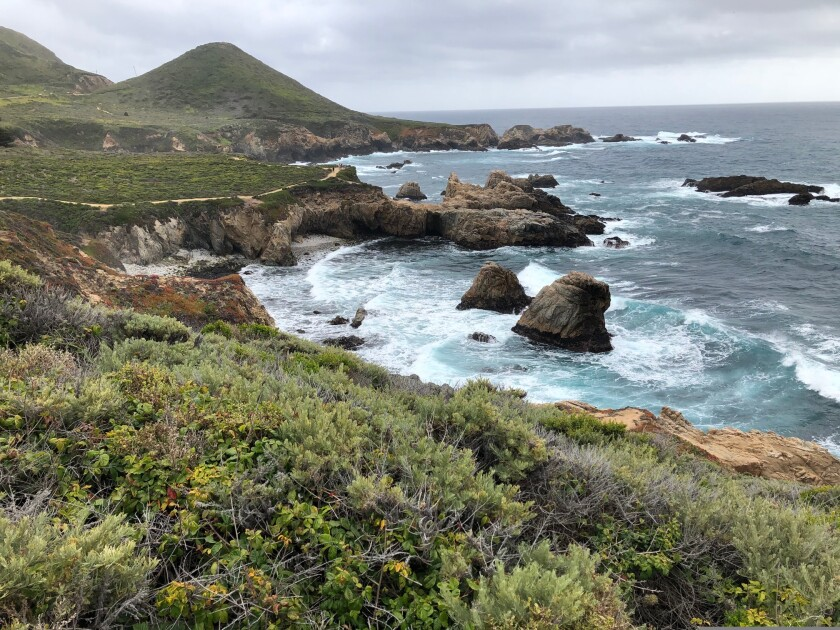 Garrapata (Spanish for tick) State Park in Big Sur.