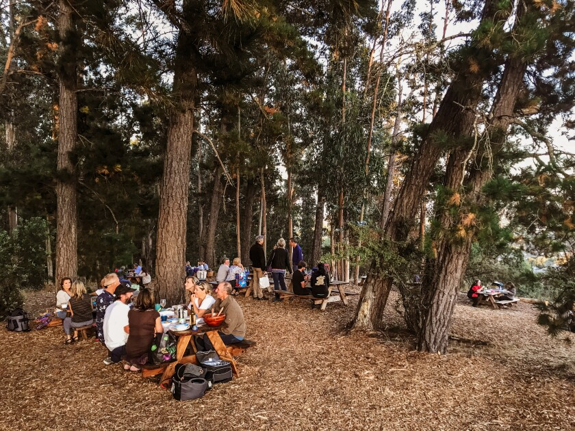 Attendees enjoying a pre-show picnic in The Grove