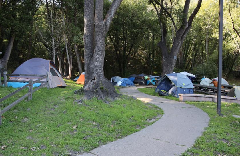 A homeless encampment at Harvey West Park in Santa Cruz.