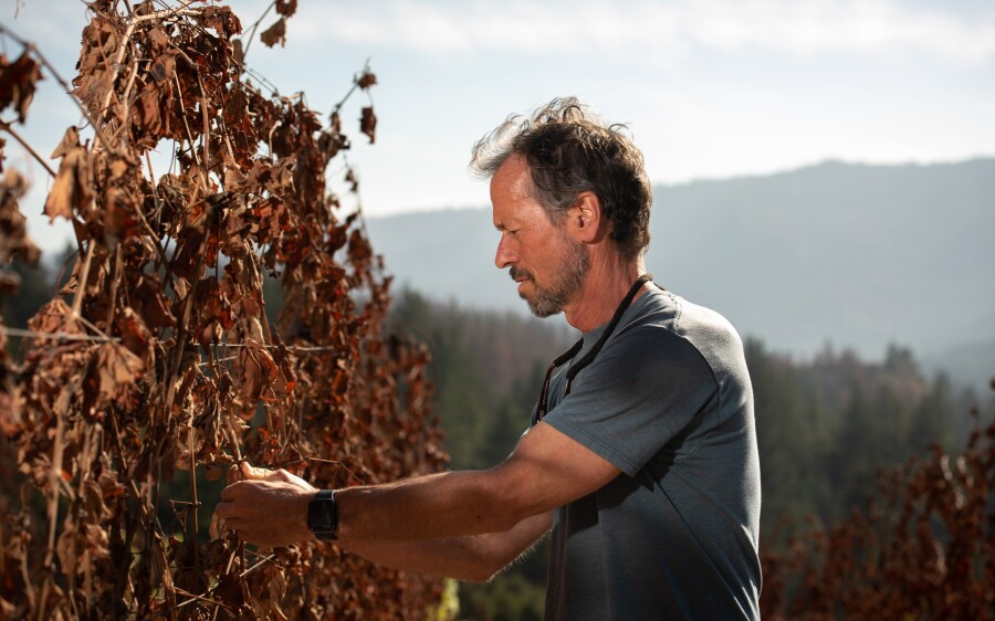 Bradley Brown of Big Basin Vineyards