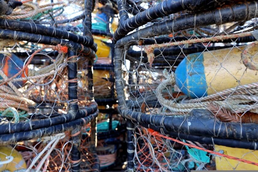 Crab traps sit unused in the Santa Cruz Harbor on Tuesday, Dec. 22.