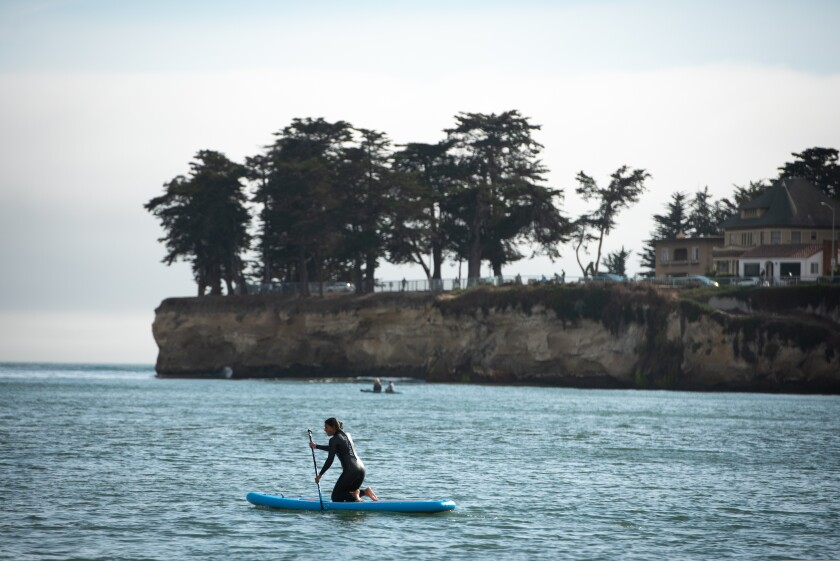 Kayakers and paddleboarders can head out from the Cowell's/wharf area toward Lighthouse Point and beyond.