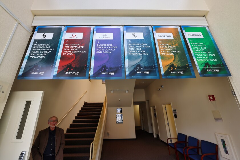 """Banners of the first six businesses to """"graduate"""" in the entrance to Startup Sandbox."""