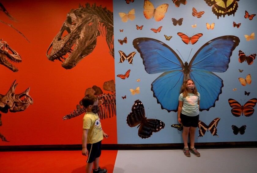 Olivia Brown and her brother Jacob visit the Natural History Museum in Los Angeles