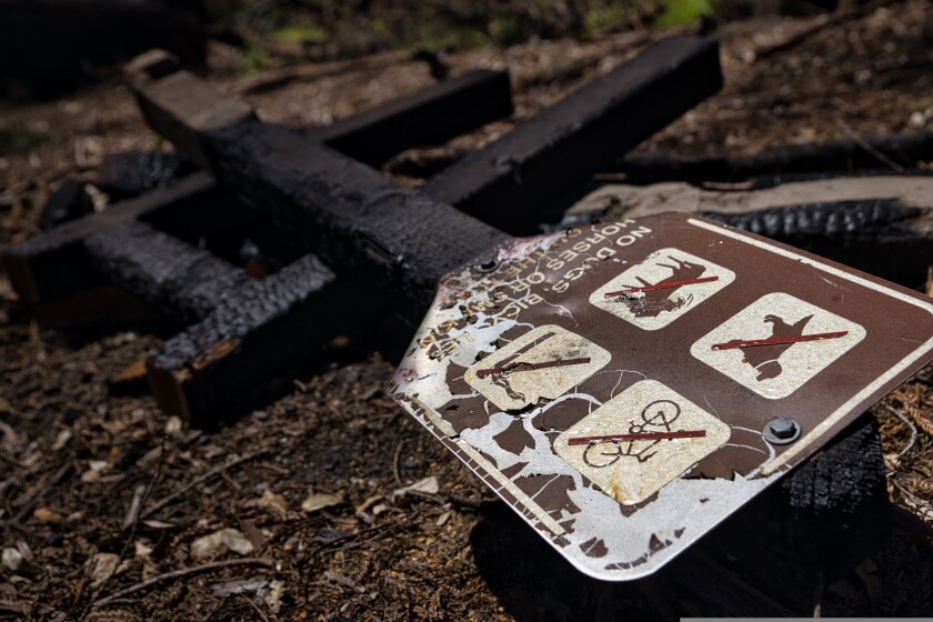 A fire-damaged sign lays on the ground inside Big Basin State Park on Tuesday, August 10.