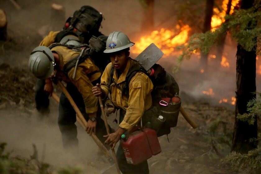 Firefighters use hand tools to dig lines in the forest ground as flames burn behind them
