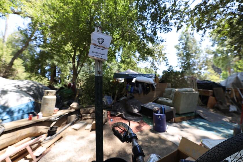 Camp Paradise, at the end of Felker Street along the San Lorenzo River banks, in Santa Cruz.