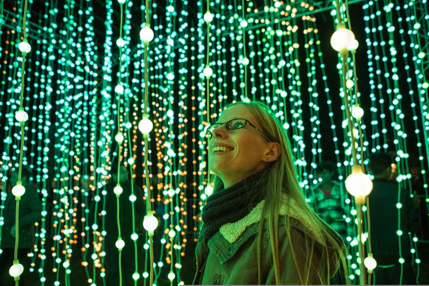 """A look at the """"Ocean of Light: Submergence"""" exhibition."""