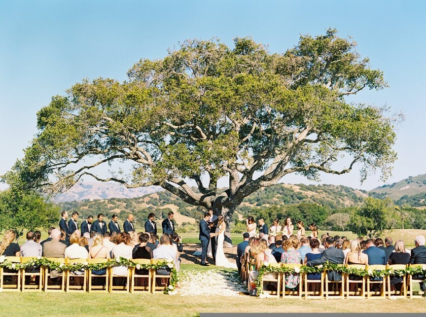 Outdoor is everything these days when it comes to weddings.