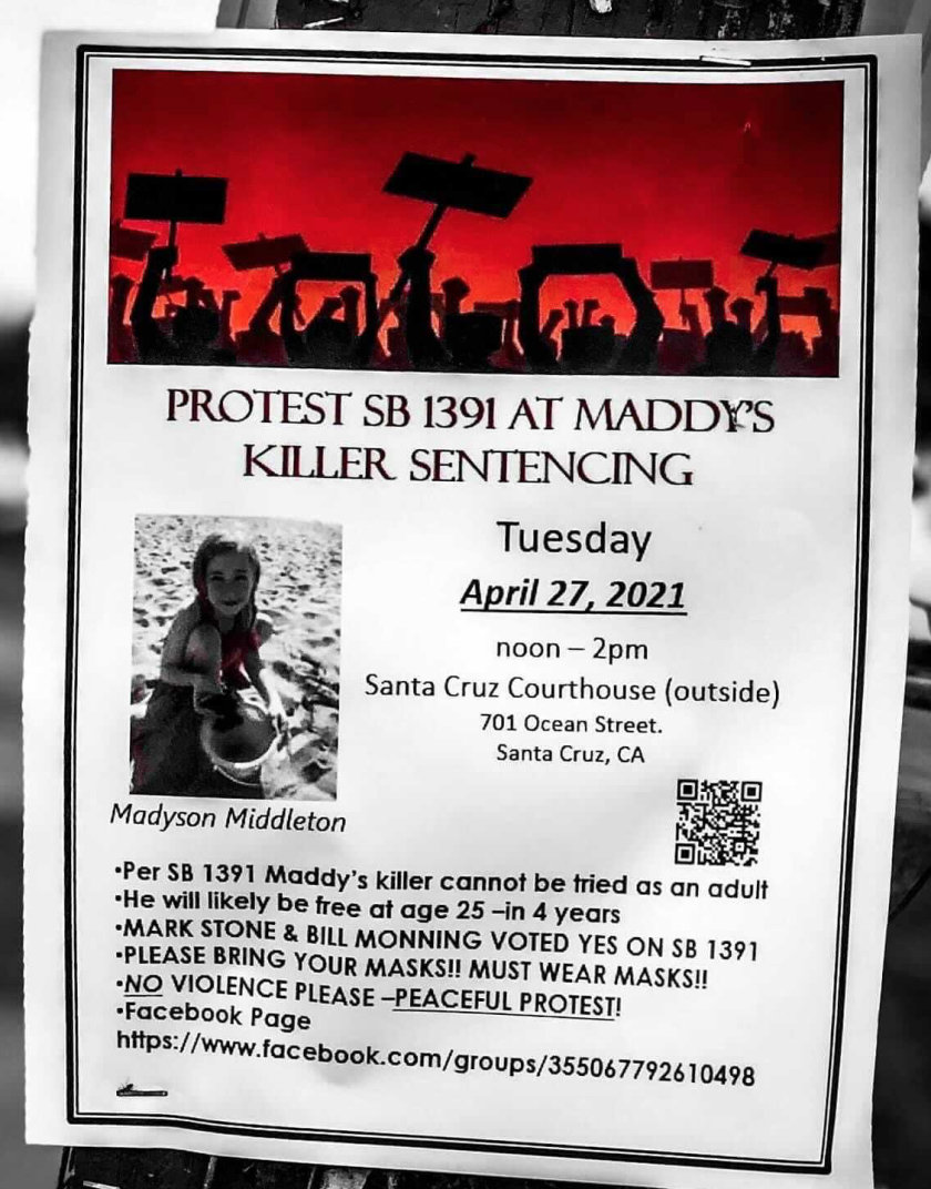 A flyer regarding the protest planned outside the Santa Cruz County courthouse on Tuesday.
