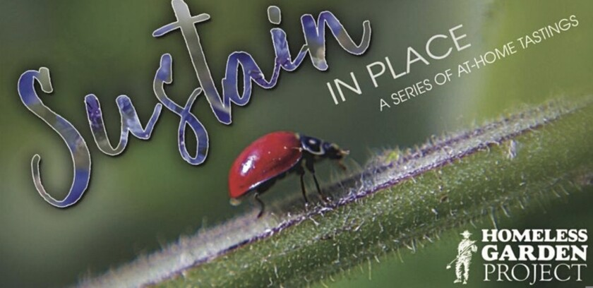 A promotional flyer for the Homeless Garden Project's Sustain in Place series