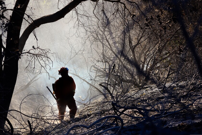 A firefighter in smoky, hilly woods
