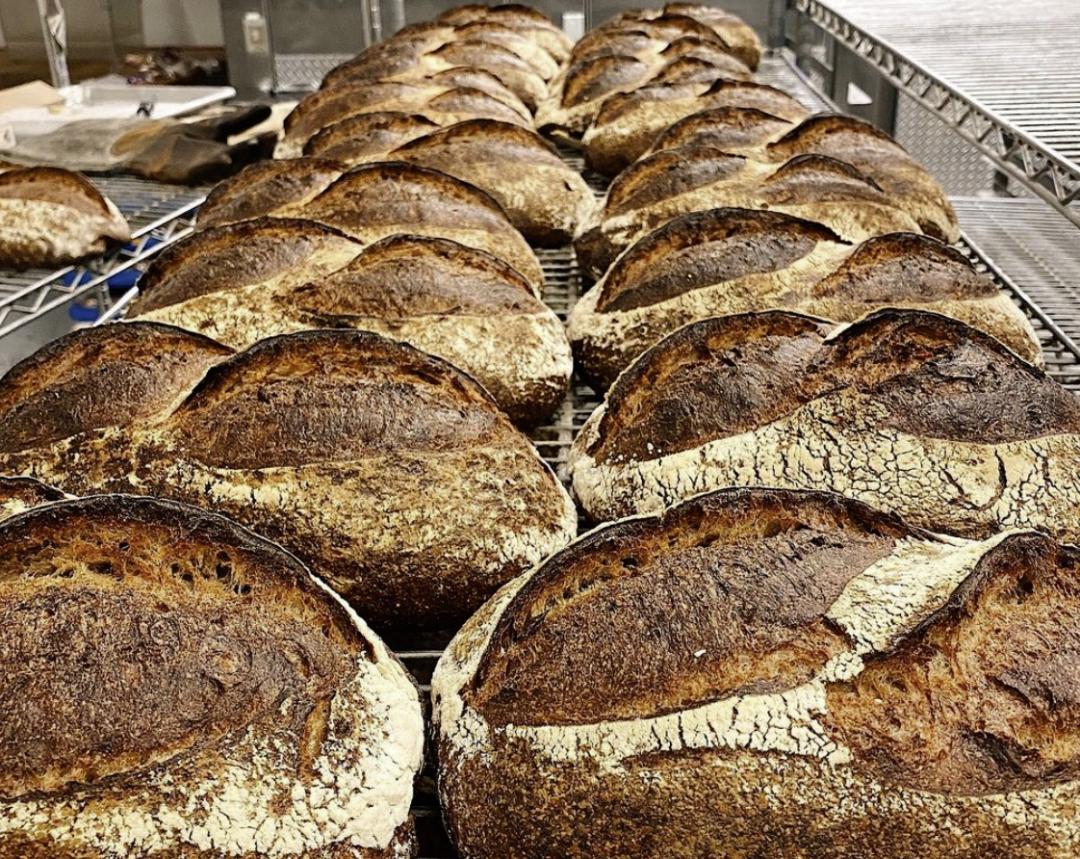 Fresh Manresa bread.