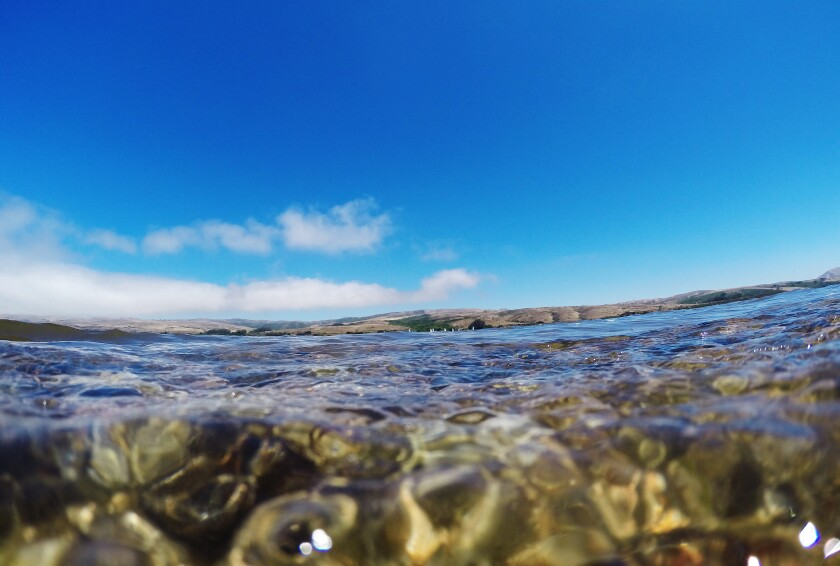 Clear water and deep blue sky at Tomales Bay on July 20, 2016 in Point Reyes National Seashore, California.