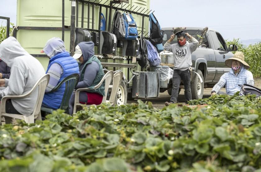 California is modifying the Housing for the Harvest program.