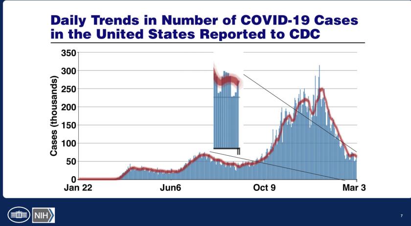 Slide showing daily coronavirus cases in U.S.