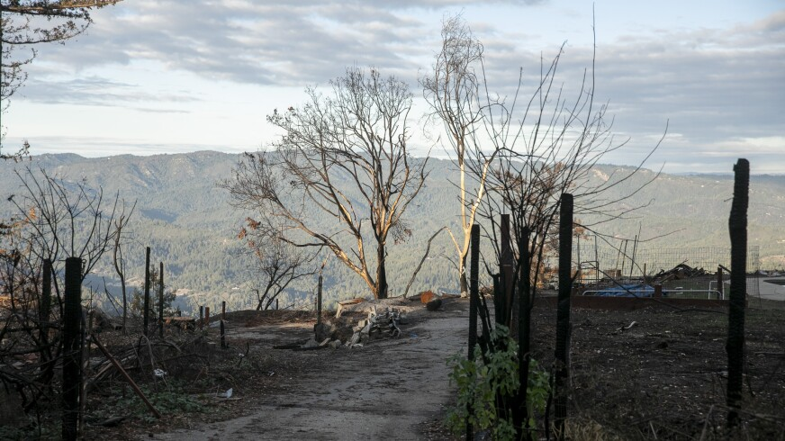 A scorched property in Bonny Doon