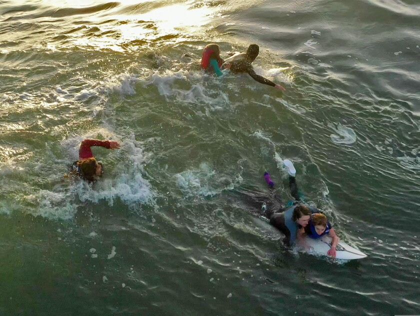 12 kids were rescued today at the harbor after their boats capsized.