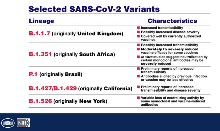 Slide describing variants