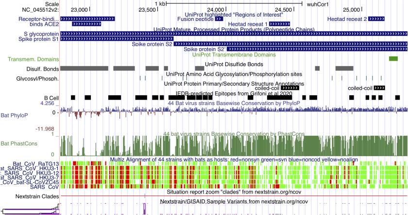View of SARS-CoV-2 genomic datasets in the UCSC Genome Browser.